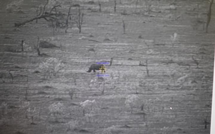 квадрокоптеры против браконьерства 3