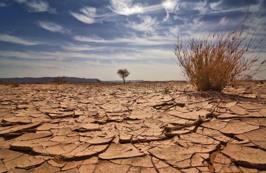 пустыня Сахель