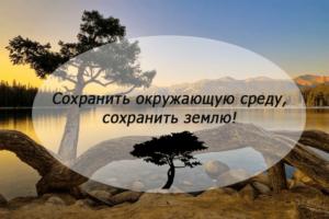 Экологический плакат Сохранить окружающую среду, сохранить Землю!