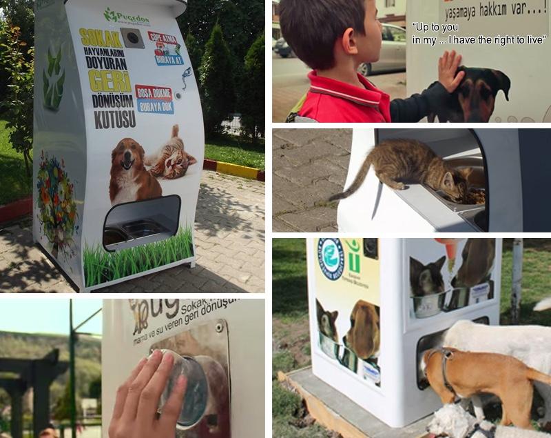 Автомат для приема пэт бутылок и корм для животных