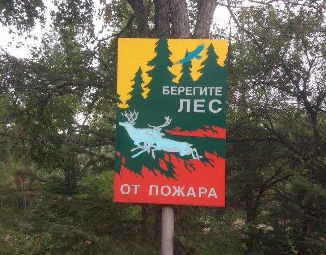лозунги берегите лес