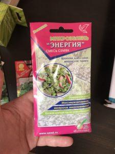 выращиваем микрозелень